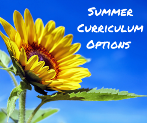 Summer Lesson Options that Work
